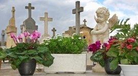 carri funebri, urne cinerarie, funerali a prezzi calmierati