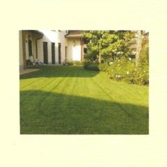 manutenzione aree verdi, manutenzione giardini