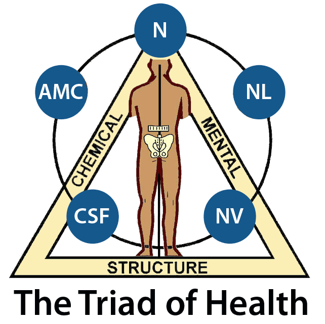 Chiropractor, Applied Kinesiologist, Integrated Nutritionist, and CranioSacral Therapist Located in the West Village of Manhattan New York City 10014