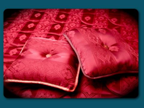 cuscini in raso, cuscini sin coordinato, complemento d