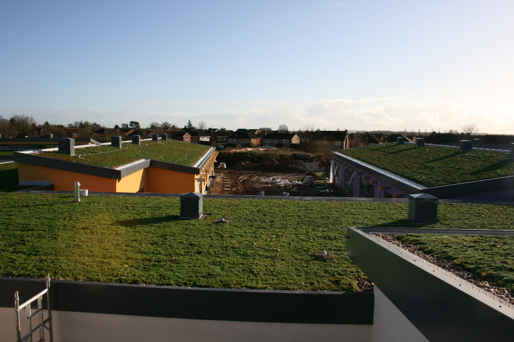 green roofing experts