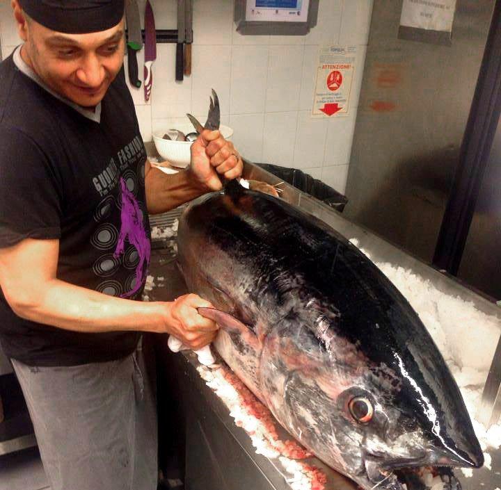 cuoco pulisce enorme pesce in cucina