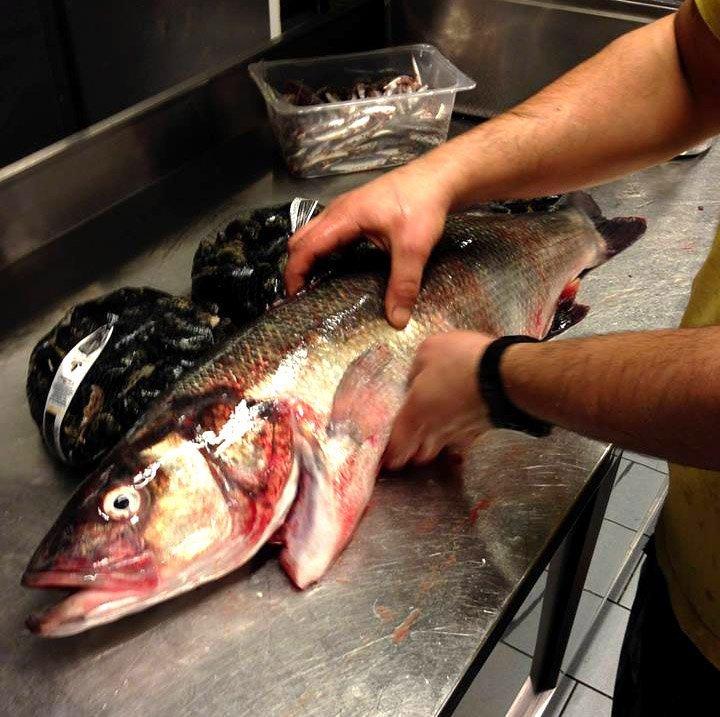 lavorazione del pesce fresco