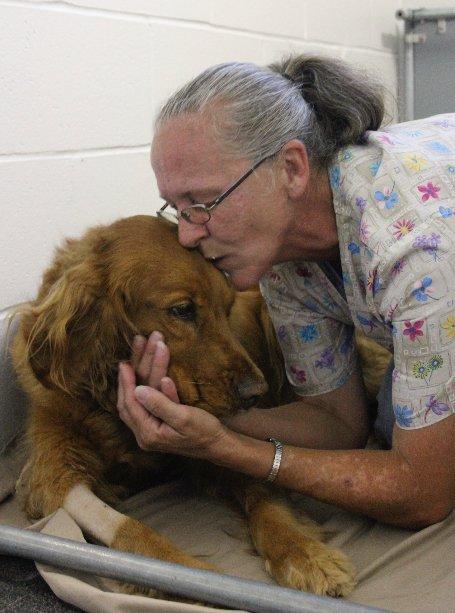 Animal Hospital in Navarre,  FL - Wynn Haven Animal Hospital
