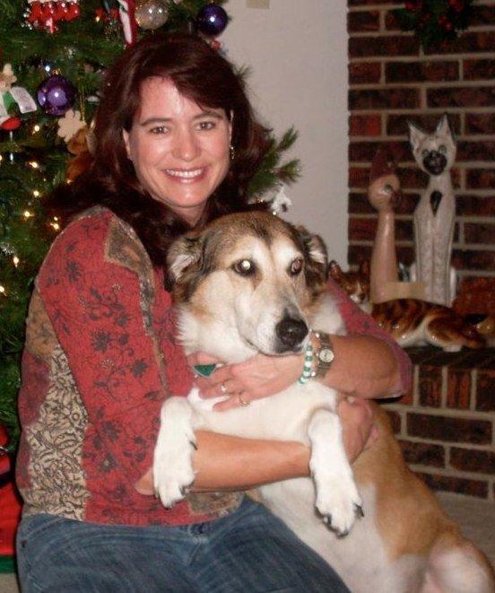 Animal Vet Clinic in Mary Esther,  FL - Wynn Haven Animal Hospital