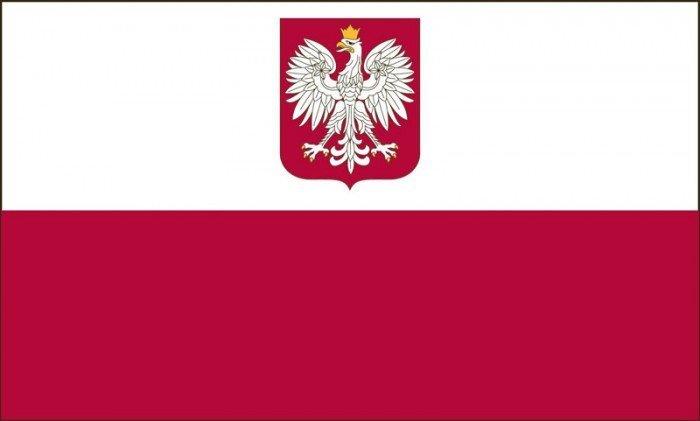 Polski logo