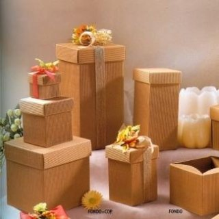 scatole di cartone con coperchio