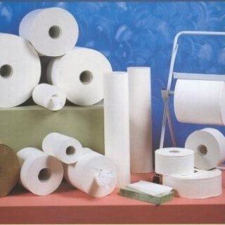 rotoloni di carta asciugatutto Torino