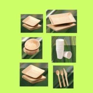 fornitura piatti biodegradabili