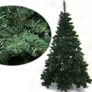 abete verde pino natalizio