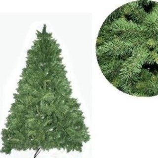 abete verde himalaya