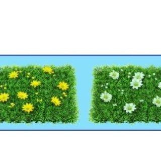 Zolle prato sintetico c/fiori per vetrina