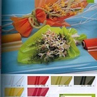 polipropilene colorato