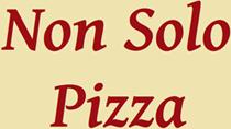 NON SOLO PIZZA- LOGO