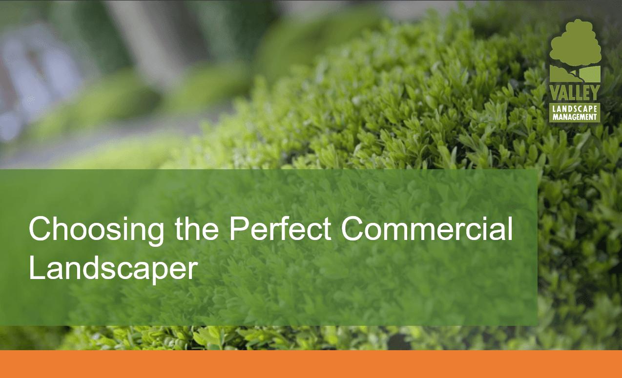 choosingtheperfectcommerciallandscaperpng