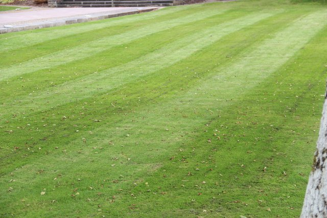 Commercial Grounds Maintenance for Hospitality, Healthcare & Care Homes   Valley Landscape Management