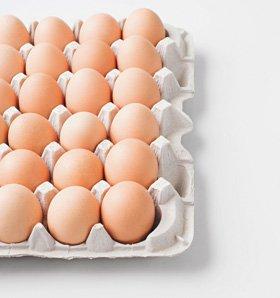 Egg supplier - Glasgow, Scotland - Auchtralure Eggs - Egg deliveries