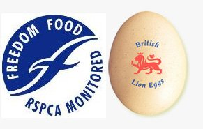 Barn eggs - Kirkcudbright, Dumfries and Galloway - Auchtralure Eggs - Free range eggs