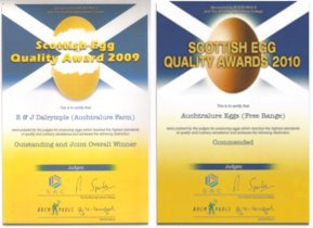 Award winning eggs - Castle Douglas, Dumfries and Galloway - Auchtralure Eggs - Fresh eggs