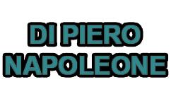 DI PIERO NAPOLEONE - LOGO
