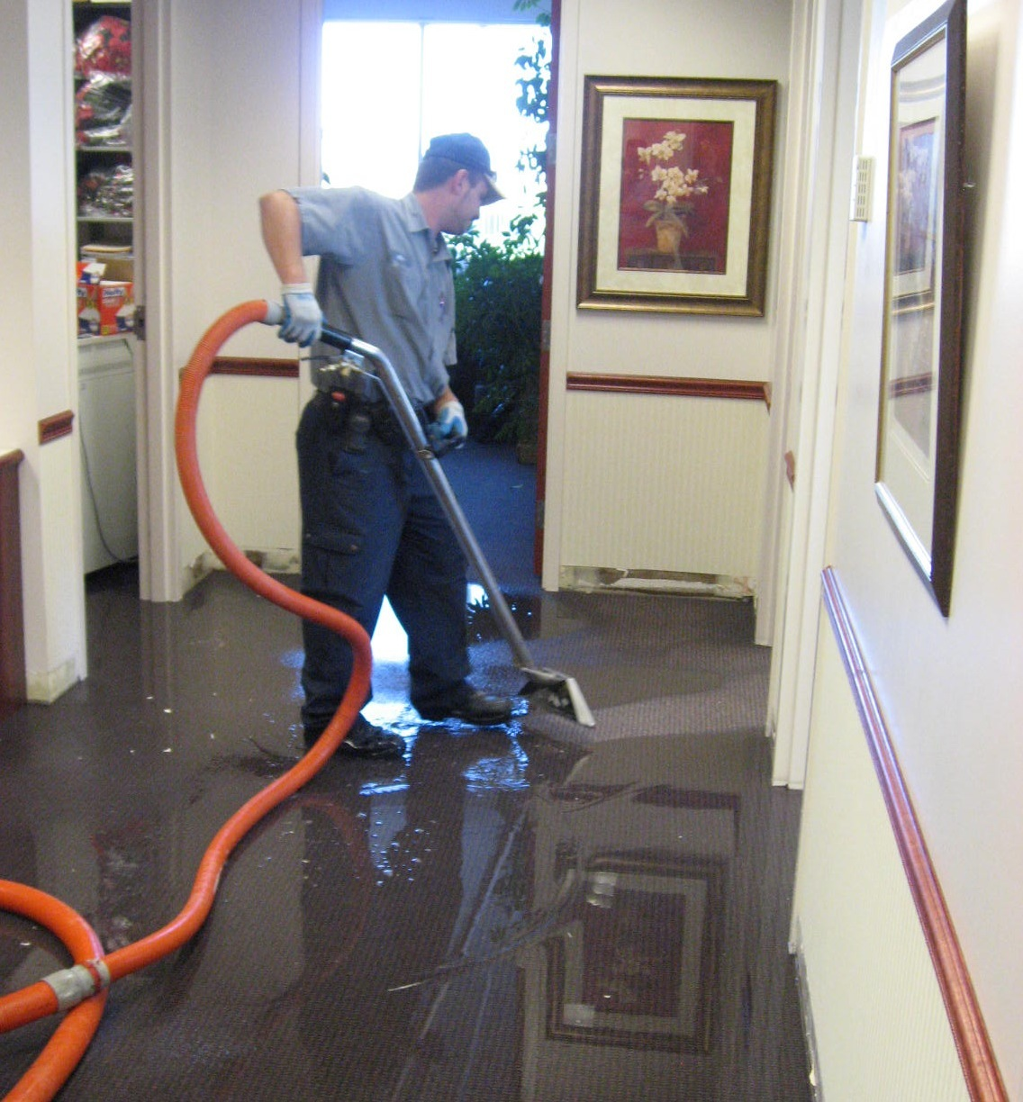 Water Damage Restoration Wilmington, NC