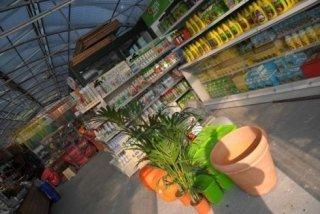 articoli per piante