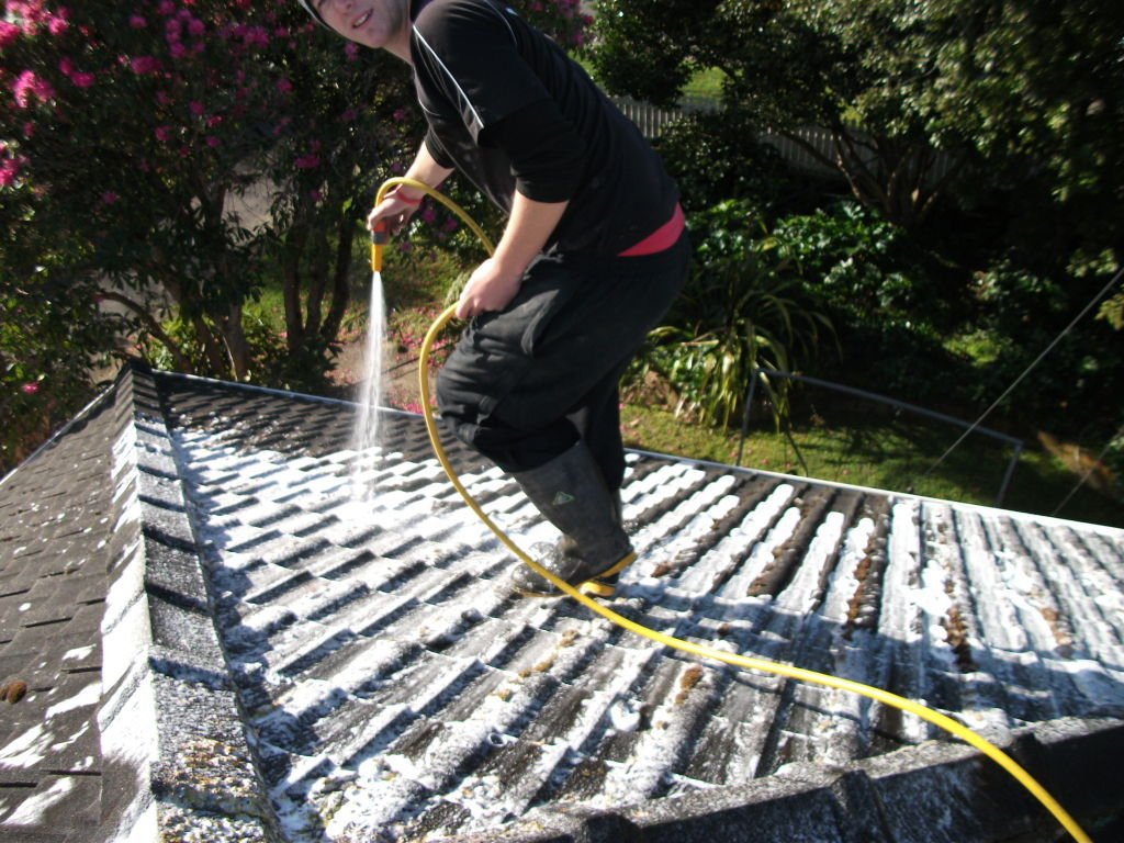 roof maintenance and cleaning in Wellington