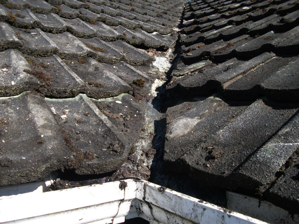 how to clean the moss off a roof