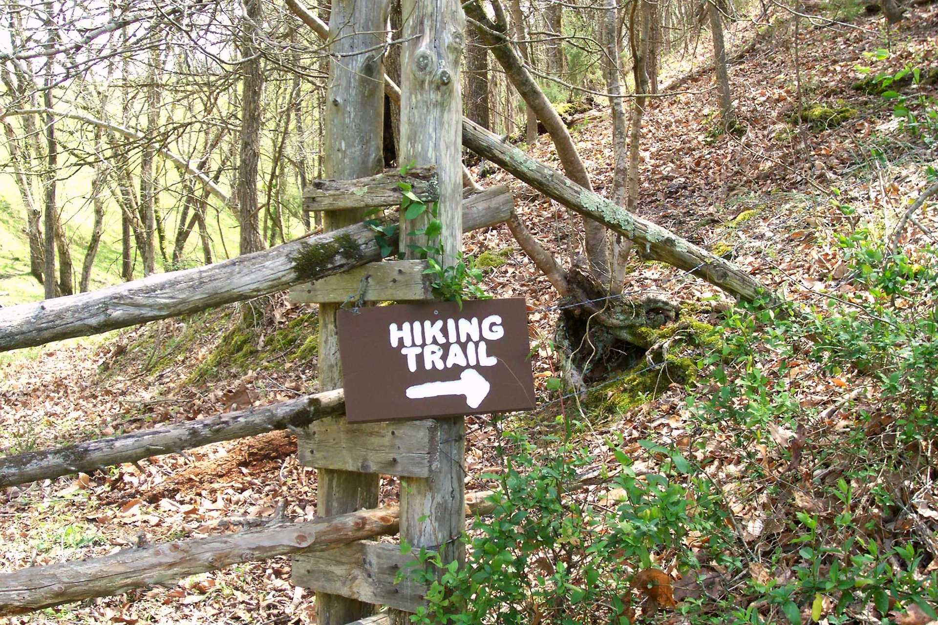 smoky mountain hiking trail