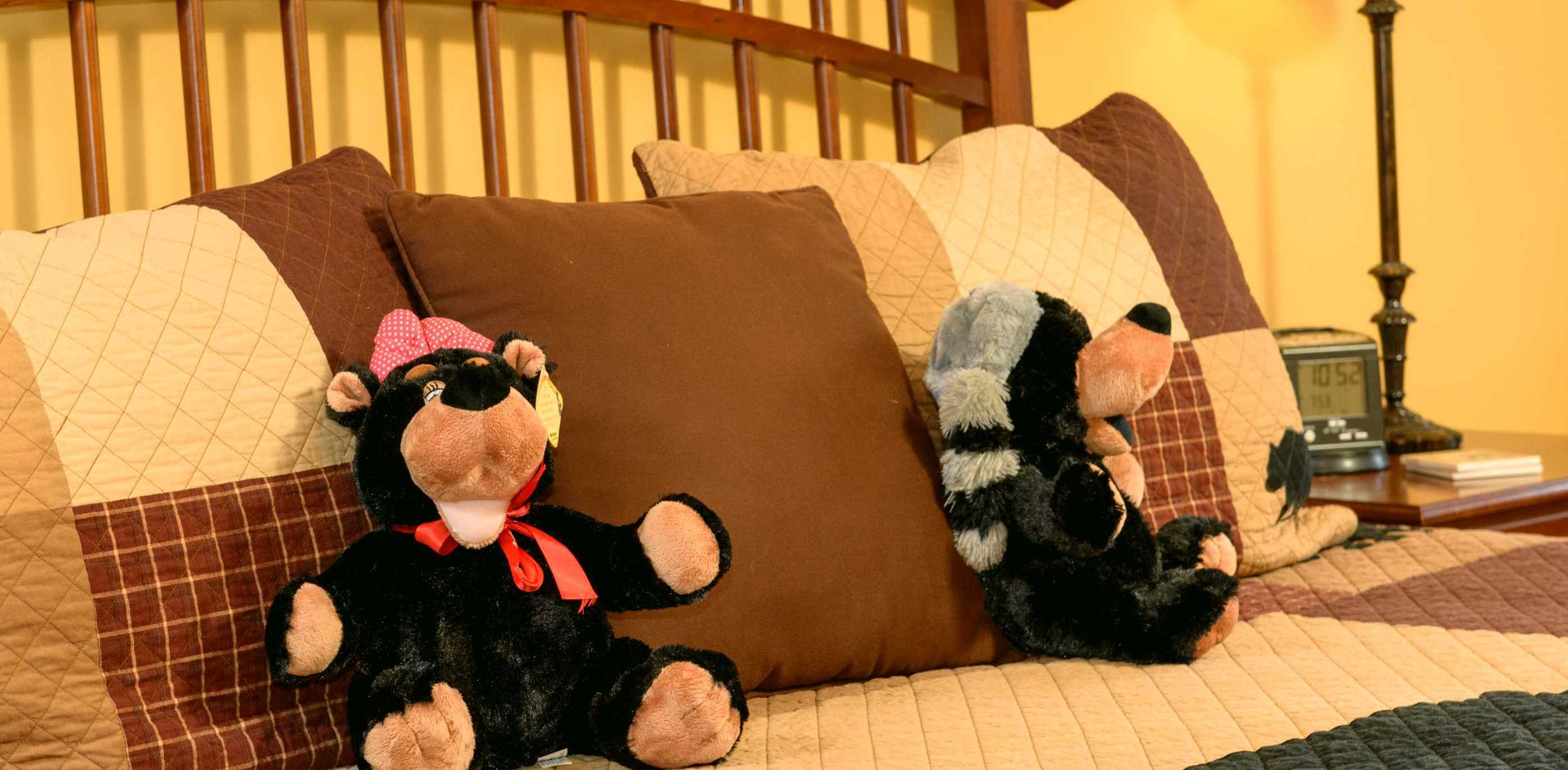Two black bears on hideaway's bed