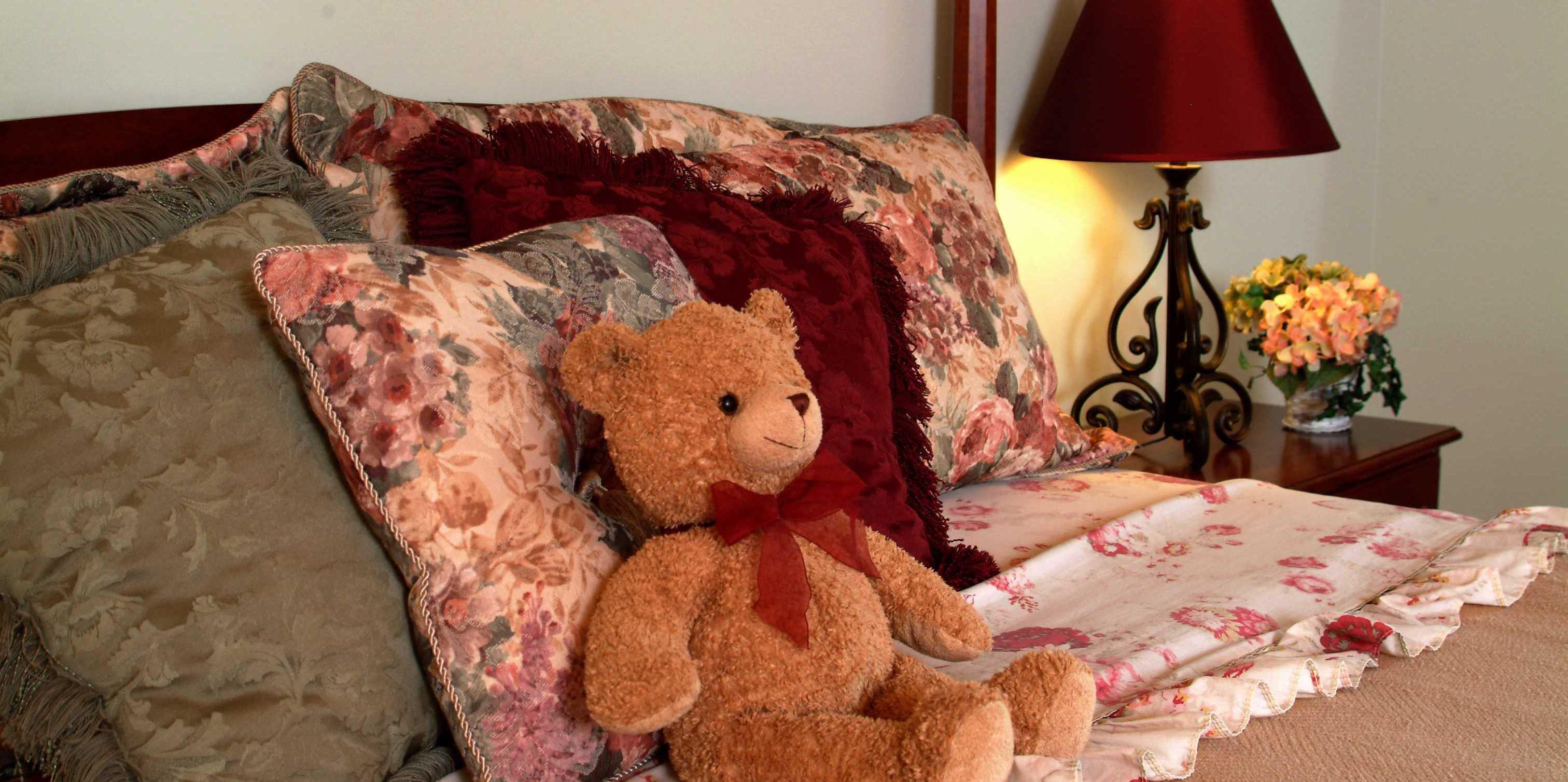 Brown bear in raspberry