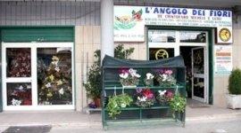 addobbi floreali, affissione avvisi di lutto, vendita fiori