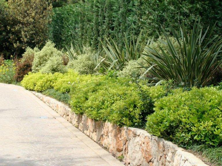 Viali e giardini
