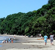 Beautiful beaches are near to the Kerikeri self contained accommodation.