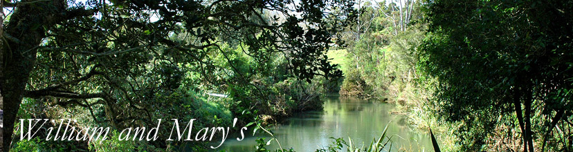 William and Mary's luxury boutique accommodation ejoys panoramic river views from the shady deck which runs the length of the self contained Kerikeri accommodation.