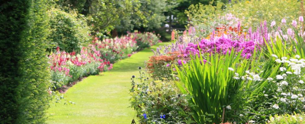 sesto verde servizio giardinaggio
