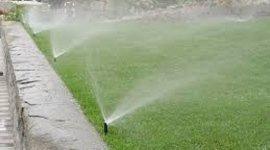 , installazione impianti di irrigazione, realizzazione vialetti in ghiaia, trattamenti per piante, innesti