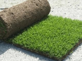 manutenzione aree verdi