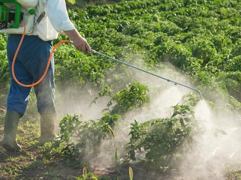 fitofarmaci agricoltura