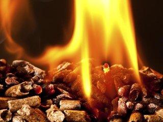 pellets e legna da ardere
