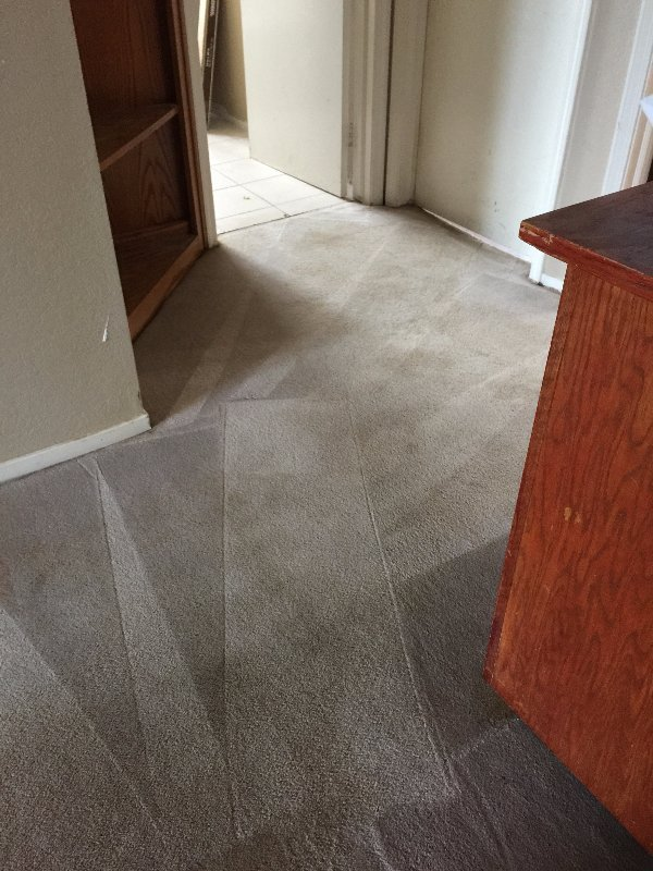 Sacramento Carpet Cleaning After
