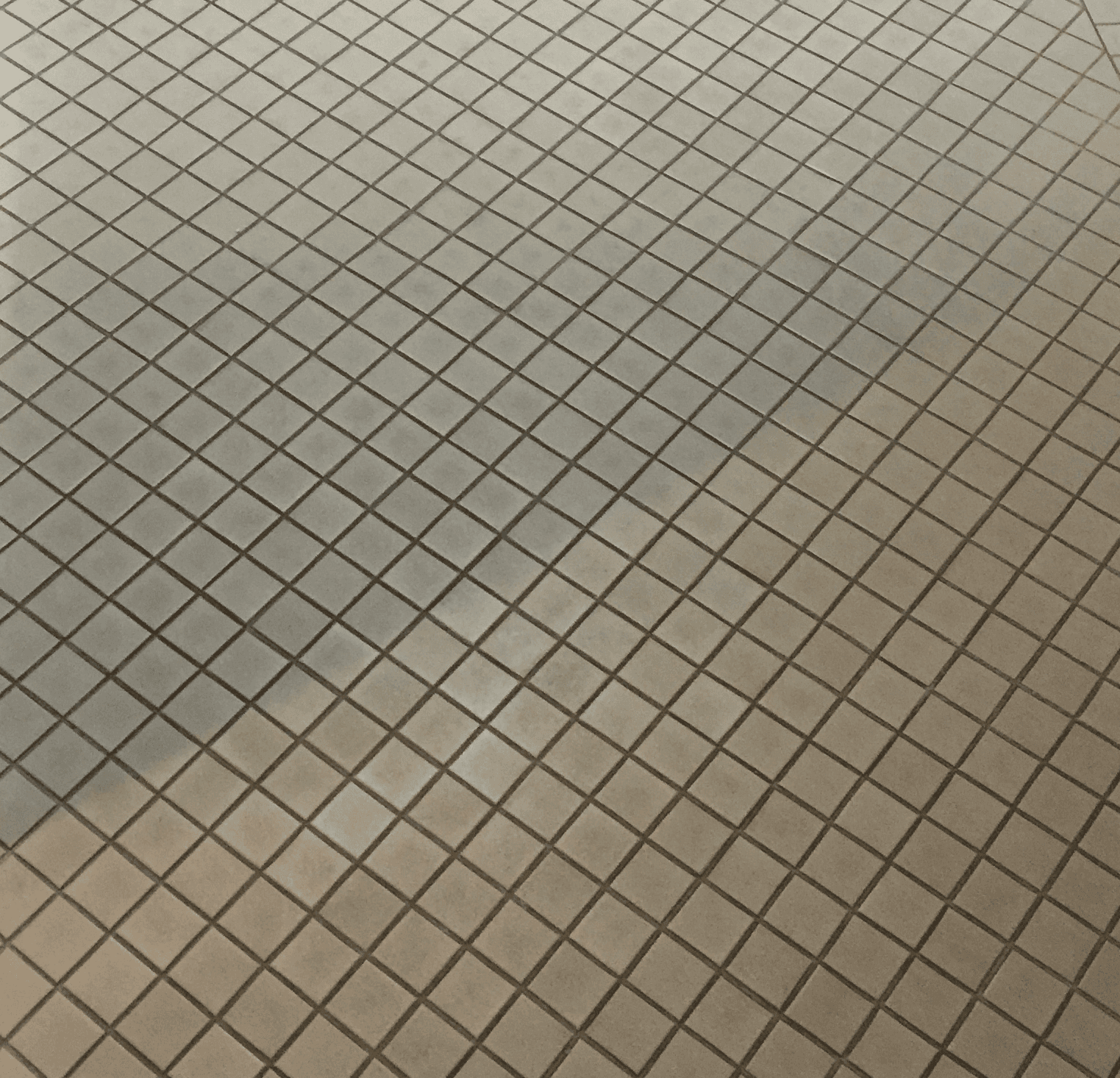 Sacramento Grout Cleaning Before