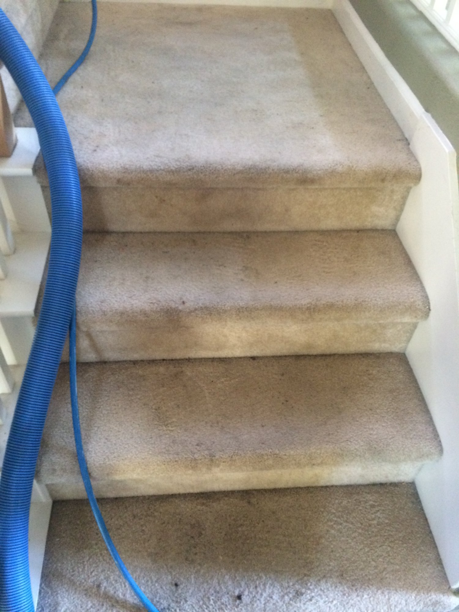 Sacramento Stair Cleaning Before