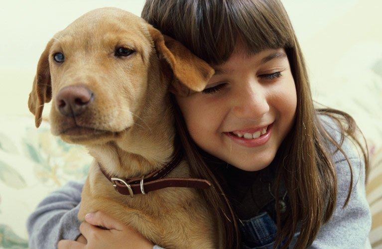 dr mustafa veterinary clinic girl hugging pet dog