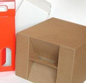 Imballi e imballaggi in cartone