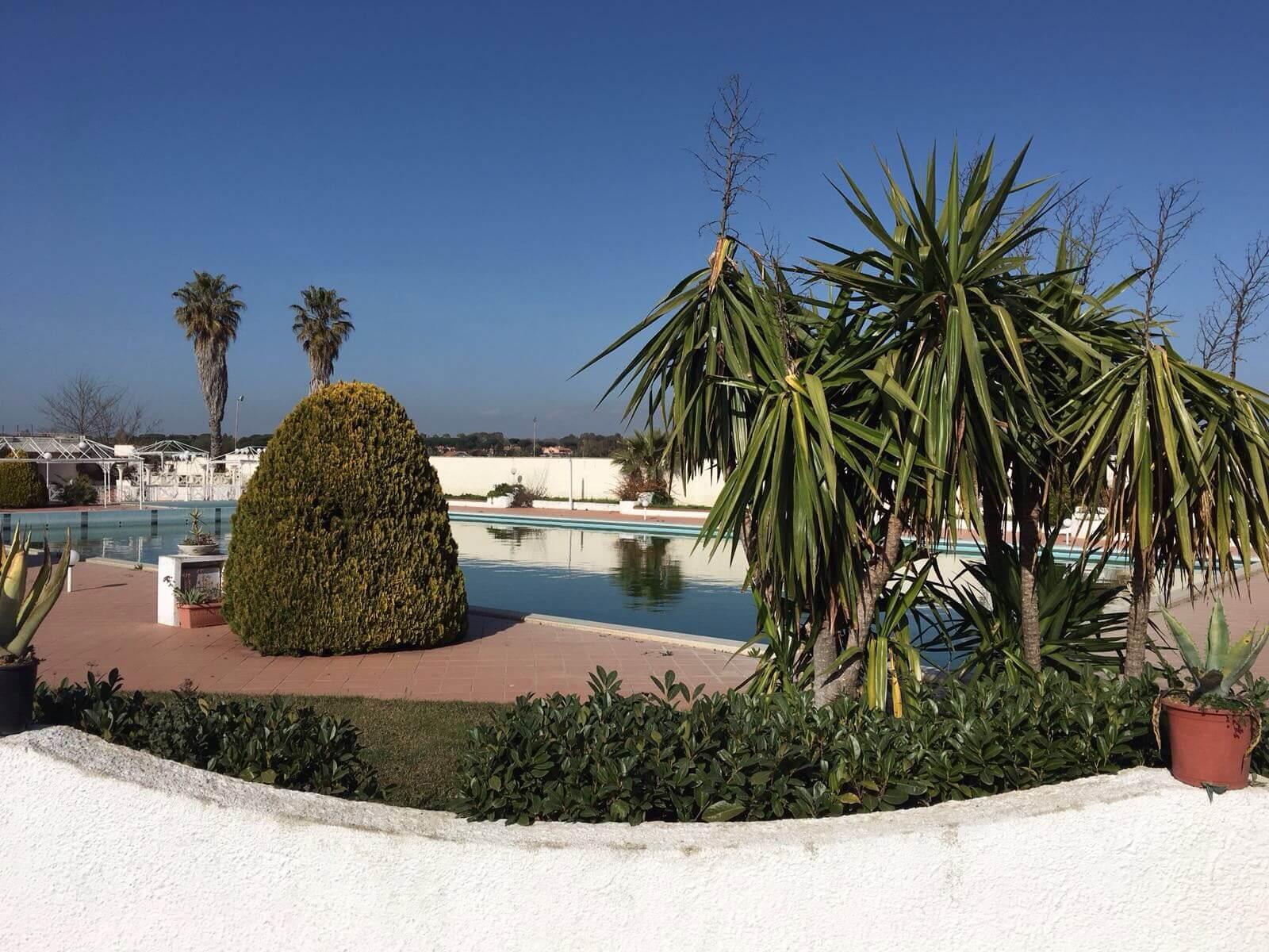 piscina con piante nel giardino