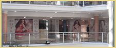 vetrofania, vetrofanie per negozi, vetrofanie personalizzate, neon grafica rimini