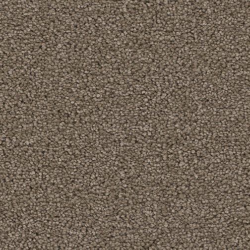 Purecolor Soft Polyester Montauk Carpet Mynewfloor
