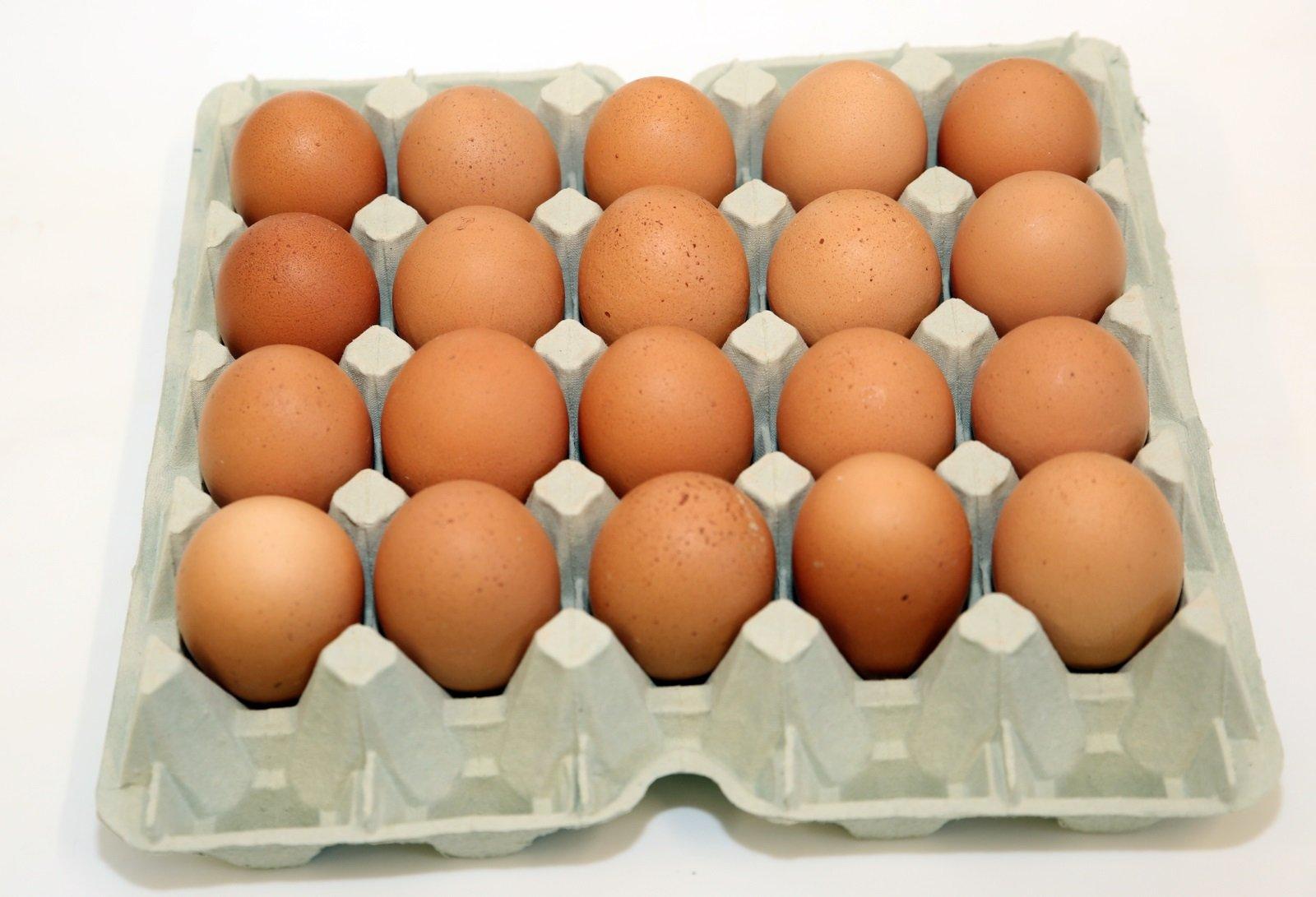 Cartone di uova