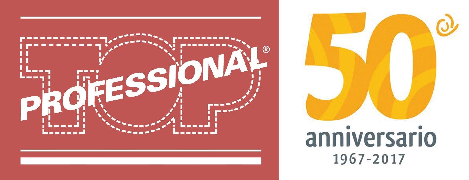 Top Professional Logo
